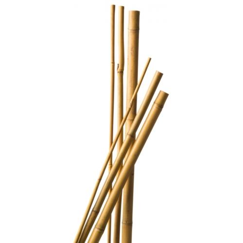 Bambusz Növénytámsztó Karó