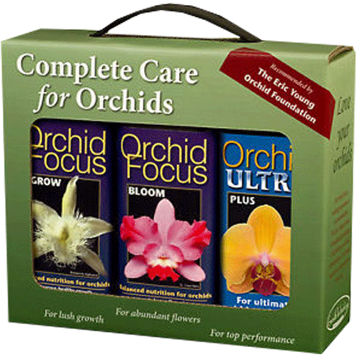 Growth Technology Orchid Focus Gift Pack 3x 300 ml